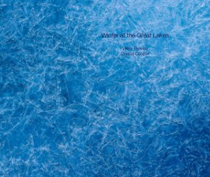 Winter at the Great Lakes book cover