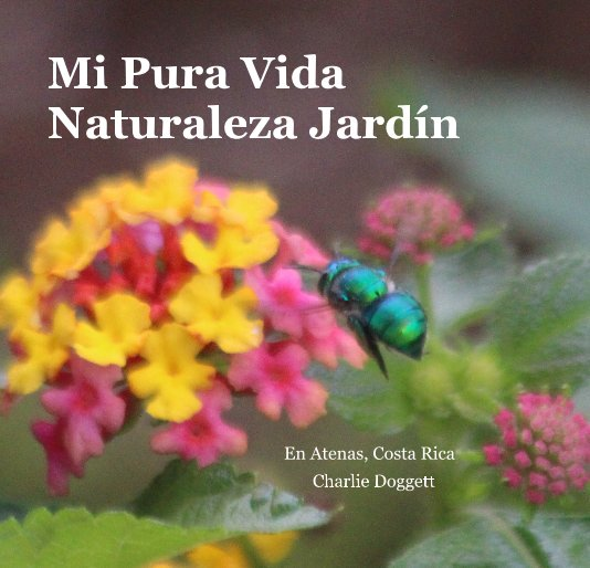 View Mi Pura Vida Naturaleza Jardín by Charlie Doggett
