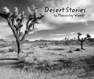 Desert Stories book cover