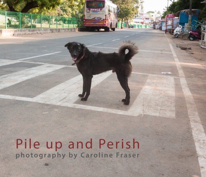 View Pile up and Perish by Caroline Fraser
