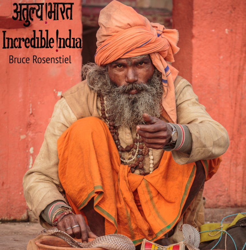 View Incredible India Volume I by Bruce Rosenstiel