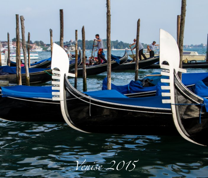 View Venise 2015 by Robert Marleau