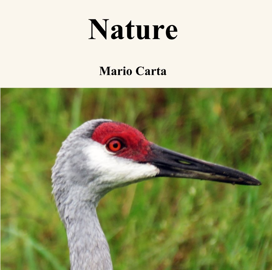 View Nature by Mario Carta