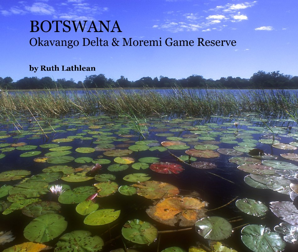View BOTSWANA by Ruth Lathlean