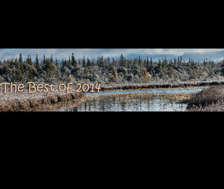 View Best of 2014 by Glenn Springer