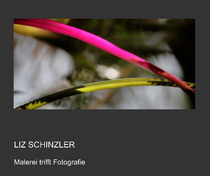 Fotografie trifft Malerei nach Liz Schinzler anzeigen