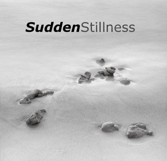 View SuddenStillness by Andy Ilachinski