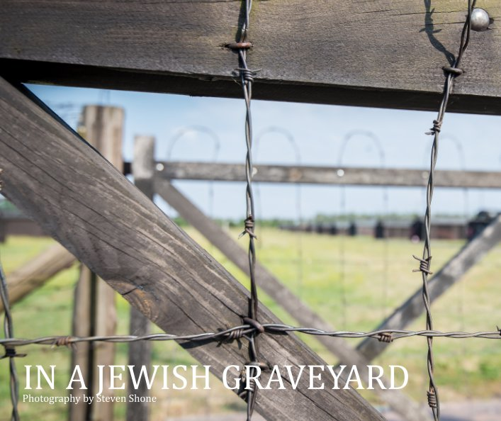 View In a Jewish Graveyard by Steven Shone