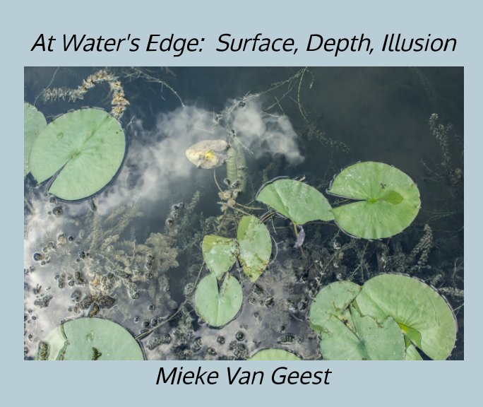 View At Water's Edge:  Surface, Depth, Illusion by Mieke Van Geest