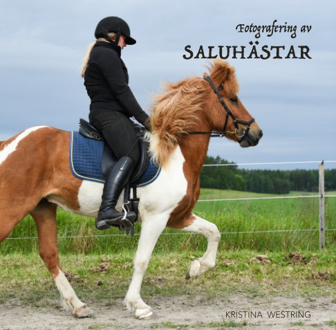 View Fotografering av Saluhästar by Kristina Westring
