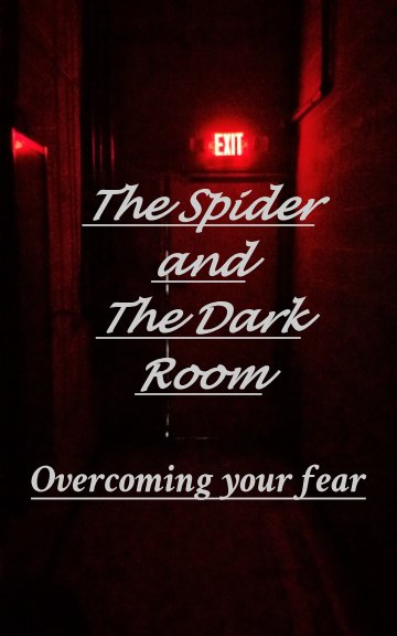 View The Spider and the Dark Room by Raphael Jones