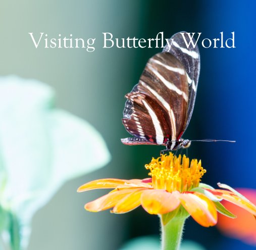 View Visiting Butterfly World by Juan Marino