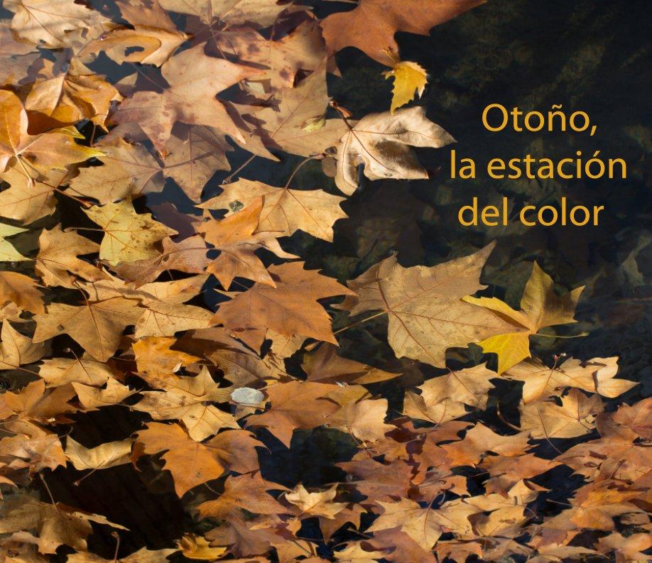 View Otoño, la estación del color by Conchita Muñoz