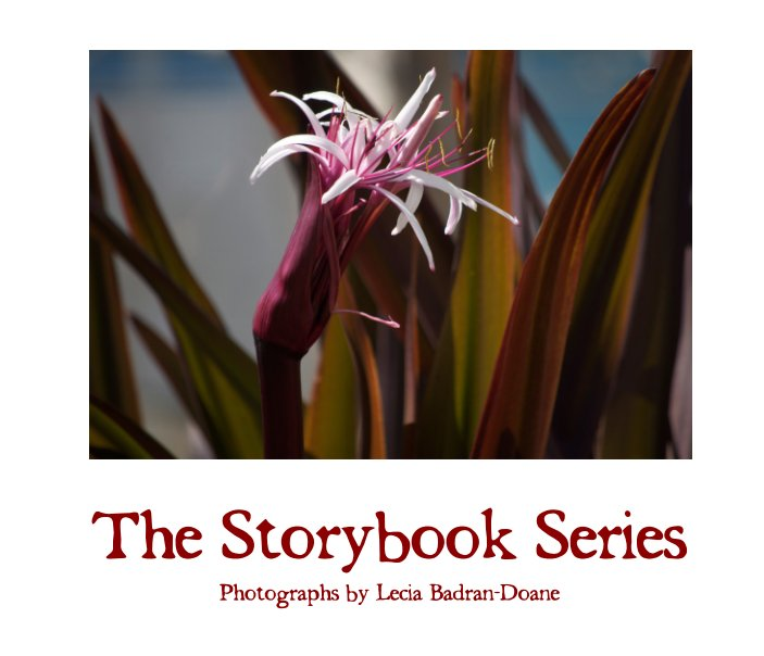 View The Storybook Series by Lecia Badran-Doane