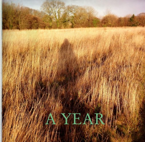 View A YEAR by Jane Wheeler