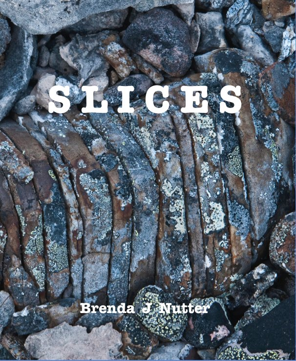 View S L I C E S by Brenda J Nutter