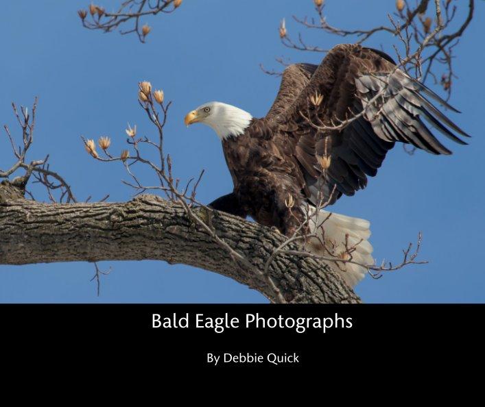 View Bald Eagle Photographs by Debbie Quick