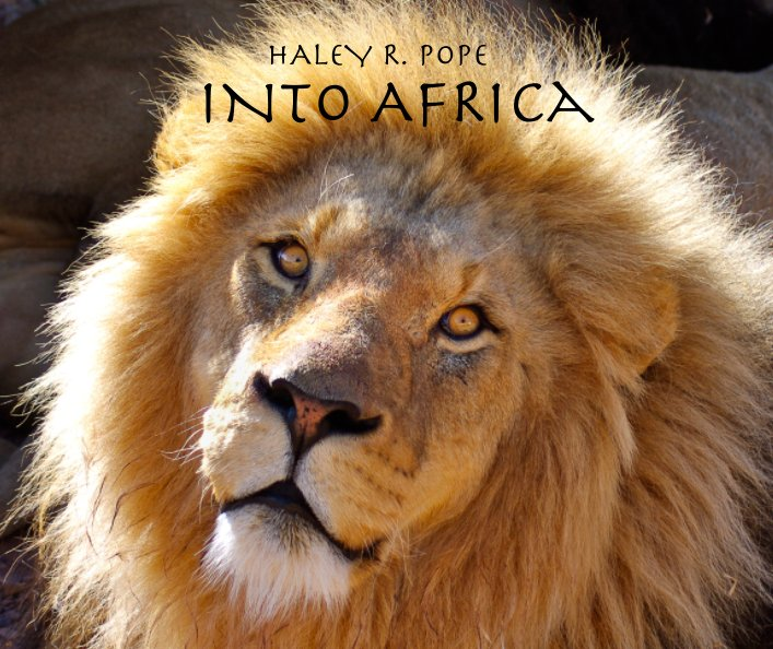 View Into Africa by Haley R. Pope