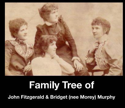 Family Tree of John Fitzgerald and Bridget (nee Morey) Murphy book cover