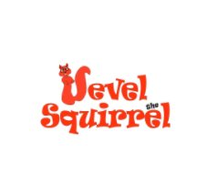 Vevel the Squirrel book cover