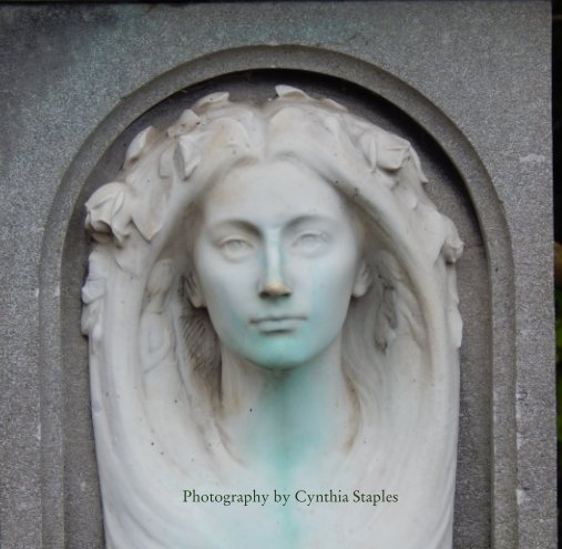 View Dublin Green by Cynthia Staples