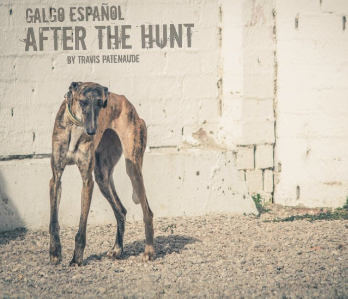 View Galgo Espanol. After the Hunt by Travis Patenaude