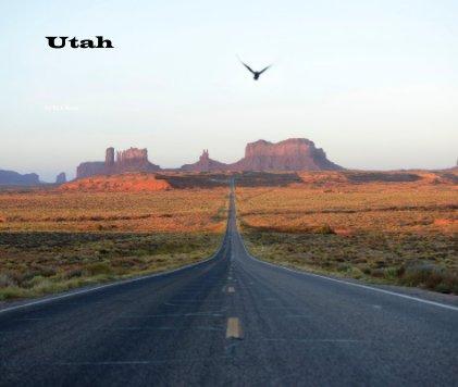 Utah book cover