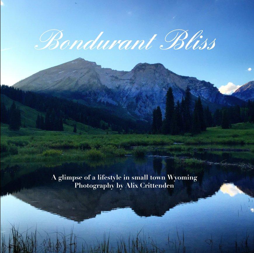 View Bondurant Bliss by Alix Crittenden