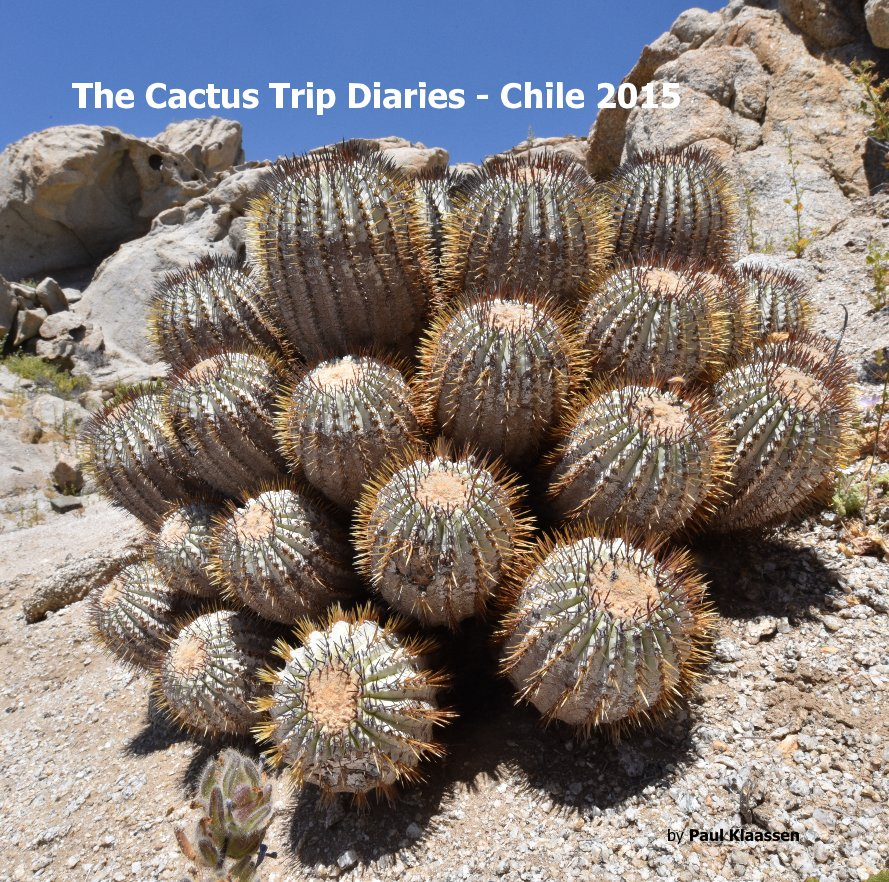 View The Cactus Trip Diaries - Chile 2015 by Paul Klaassen