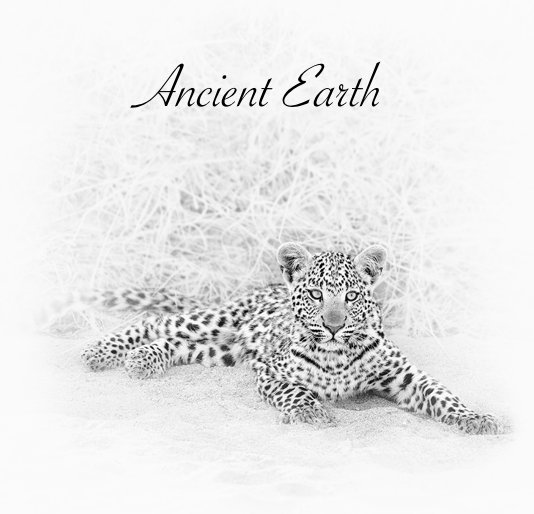 View Ancient Earth by Alison and Colin Ross