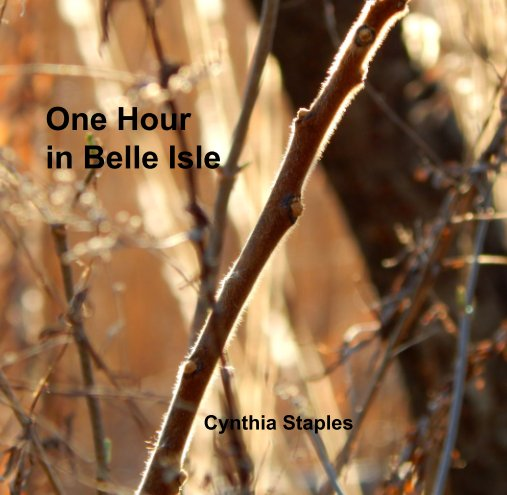 View One Hour  in Belle Isle by Cynthia Staples