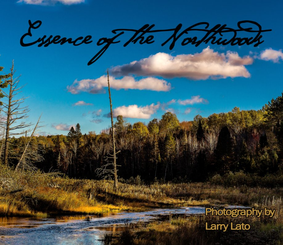 View Essence of the Northwoods by Larry Lato