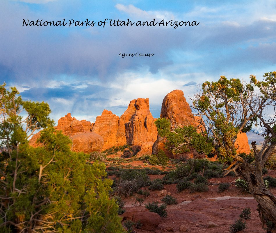 View National Parks of Utah and Arizona by Agnes Caruso
