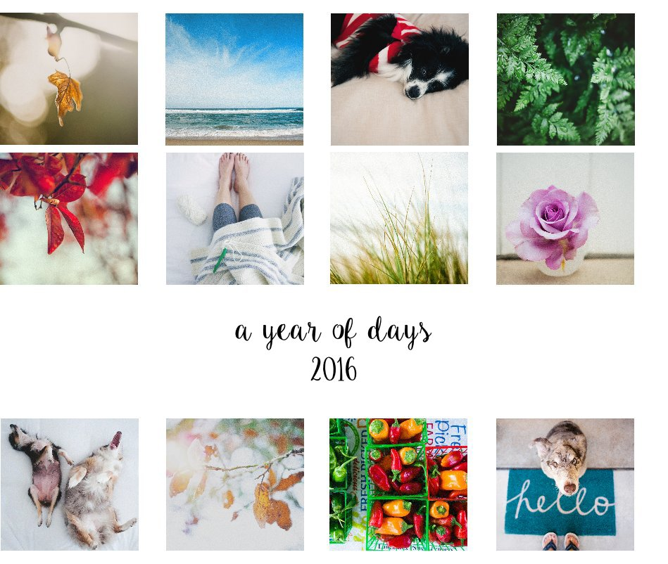 A year of days 2016 by Lisa Epp   Blurb Books Canada