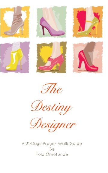 View The Destiny Designer by Fola Omotunde