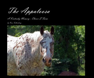 The Appaloosa book cover