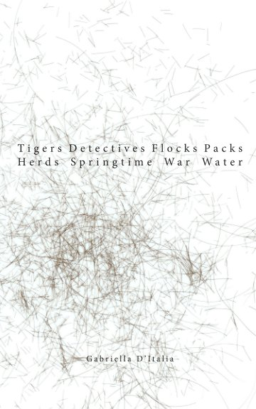 View Tigers Detectives Flocks Packs Herds Springtime Water War by Gabriella D'Italia
