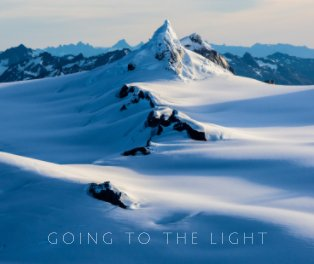 Going to the Light book cover