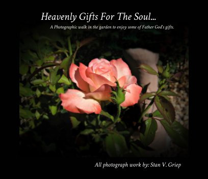 Heavenly Gifts For The Soul book cover
