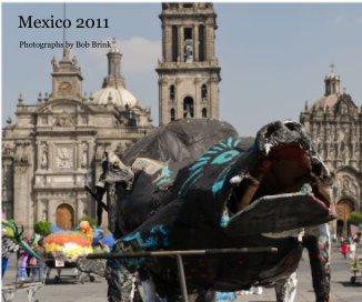 Mexico 2011 book cover