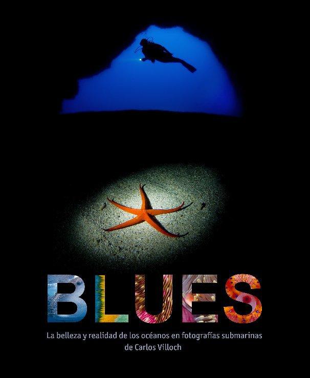 View BLUES by Carlos Villoch
