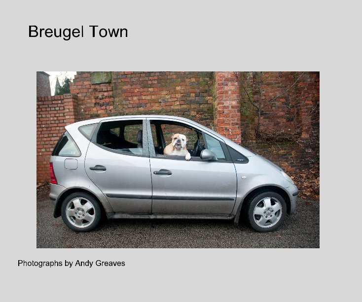 View Breugel Town by Photographs by Andy Greaves
