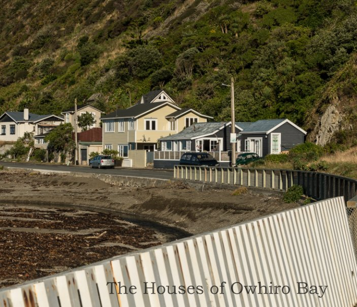 View Owhiro Bay Houses by Alan Wylde