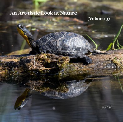 An Art-tistic Look at Nature (Volume 3) book cover