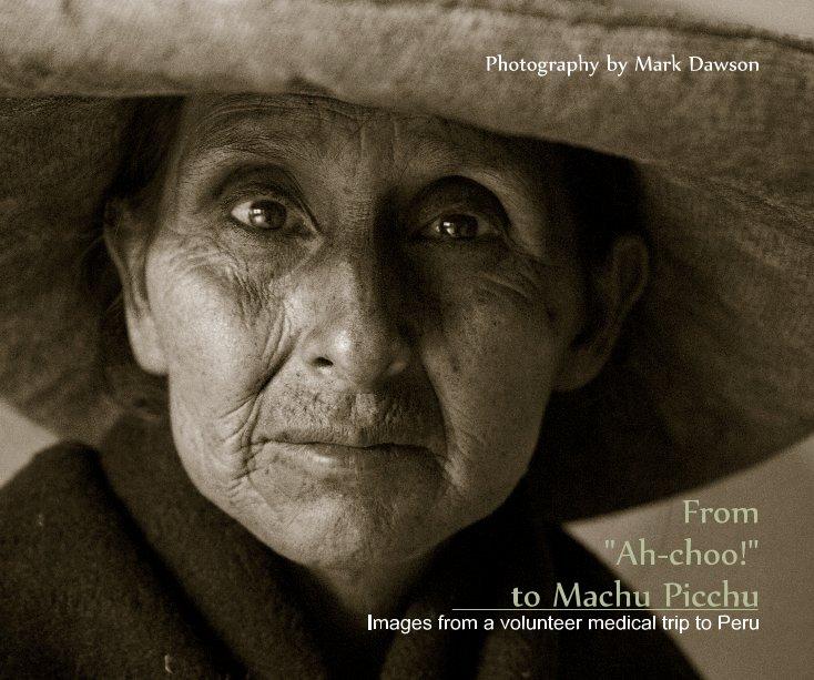 View From Ah-choo! to Machu Picchu by Mark Dawson