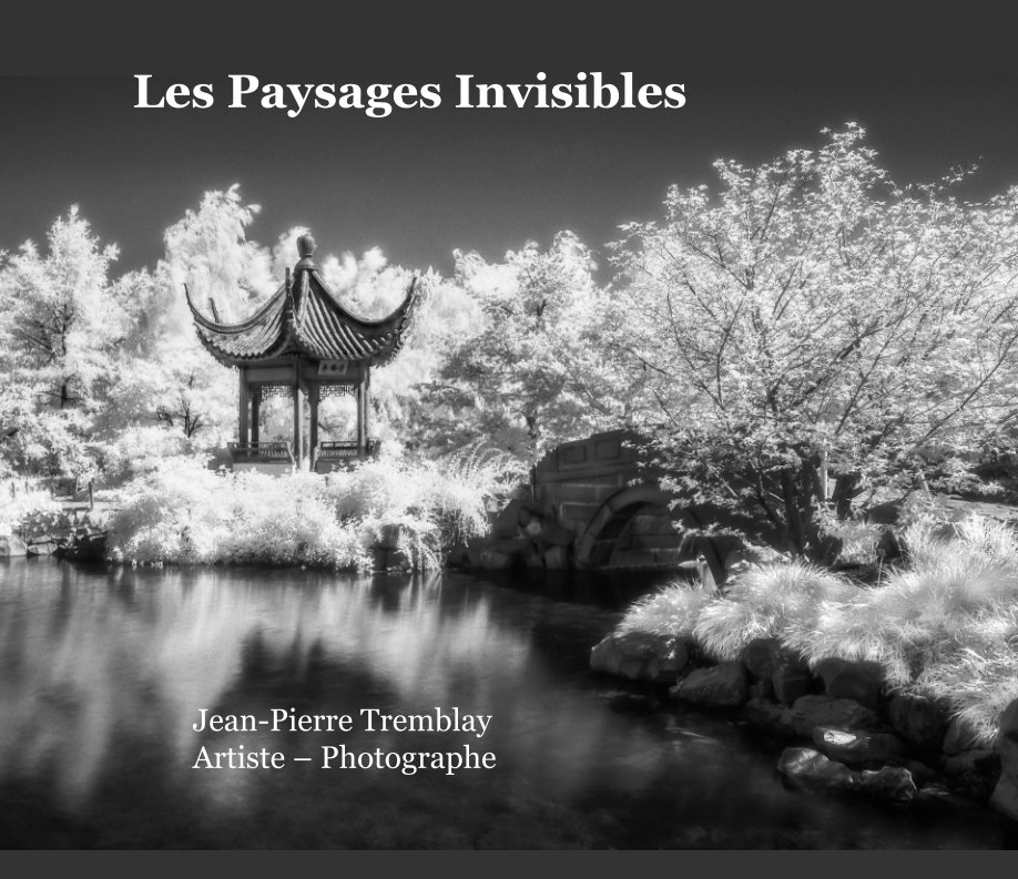 View Les Paysages Invisibles by Jean-Pierre Tremblay