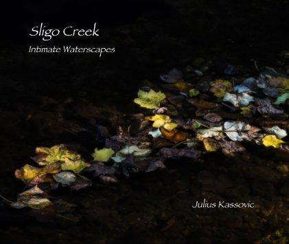 Sligo Creek book cover