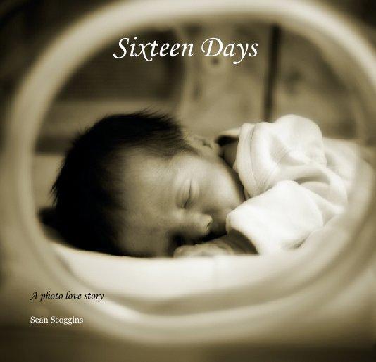 View Sixteen Days by Sean Scoggins