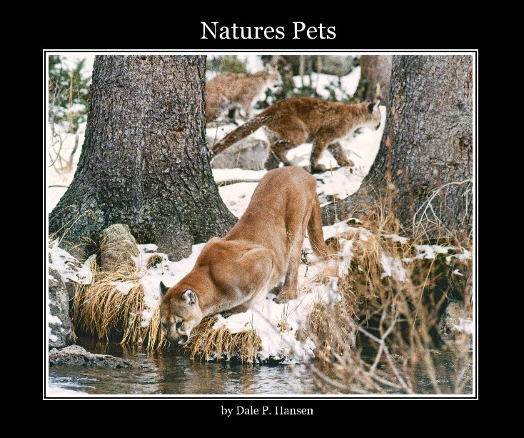 View Natures Pets by Dale P. Hansen