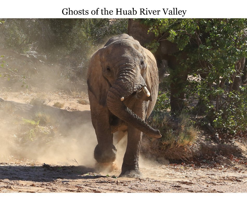 View Ghosts of the Huab River Valley by Kevin & Nicola Noyce